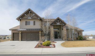 Montrose Single Family Home For Sale: 2432 Bear Lake Drive