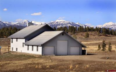 Pagosa Springs Single Family Home For Sale: 778 Easy Street