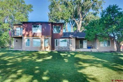 Montrose Single Family Home For Sale: 16715 Shavano Valley Road