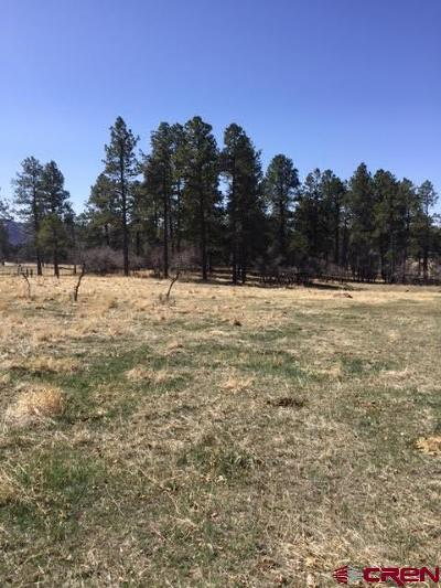 Mancos Residential Lots & Land For Sale: Road M