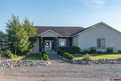 Delta Single Family Home UC/Contingent/Call LB: 3269 Hwy 348