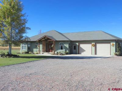 Montrose Single Family Home For Sale: 13127 6080 Road