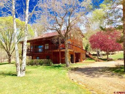 La Plata County Single Family Home For Sale: 484 N Hylander Road