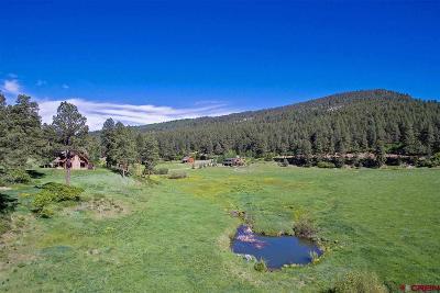 La Plata County Single Family Home For Sale: 10676 Cr 502