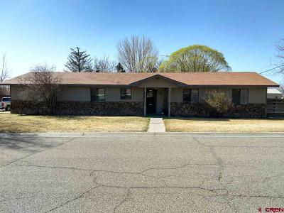 Montrose Single Family Home For Sale: 990 Mountain View Court