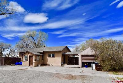 Montrose Single Family Home For Sale: 805 N 5th
