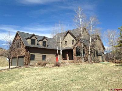 Ridgway Single Family Home For Sale: 2592 County Road 17