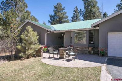 La Plata County Single Family Home For Sale: 303 Shenandoah Road