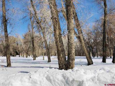Durango Residential Lots & Land For Sale: 695 Hermosa Meadows Road
