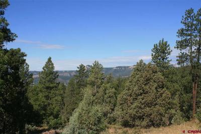 Durango Residential Lots & Land For Sale: 1 Durango Cliffs Drive