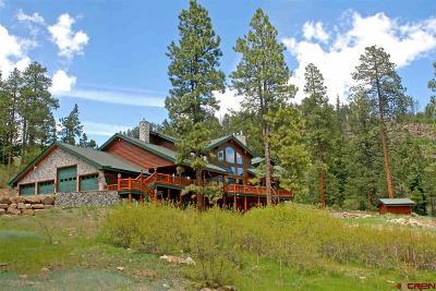La Plata County Single Family Home For Sale: 780 Trew Creek Road