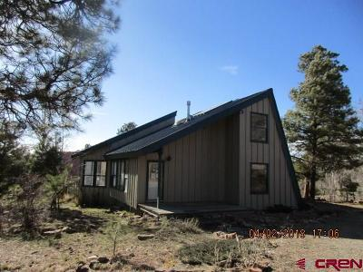 Pagosa Springs Single Family Home For Sale: 1014 Piedra Road (Cr 600)