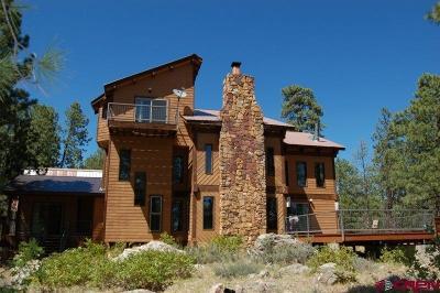 La Plata County Single Family Home For Sale: 453 Nusbaum Rd