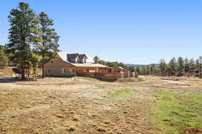 La Plata County Single Family Home For Sale: 44 Red Rooster
