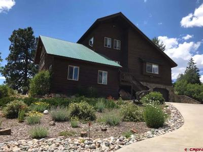 Pagosa Springs Single Family Home For Sale: 2647 Meadows Drive