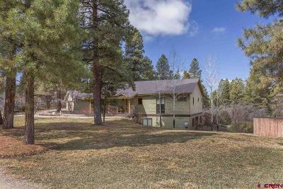 La Plata County Single Family Home For Sale: 44 Copper Belle