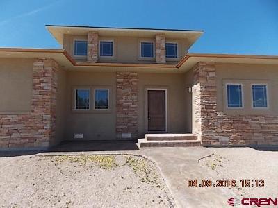 Montrose Single Family Home UC/Contingent/Call LB: 3424 Ridgeline Drive
