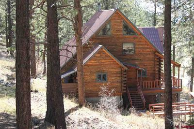 La Plata County Single Family Home For Sale: 78 Groves Drive
