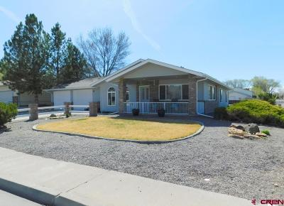 Delta CO Single Family Home For Sale: $259,900