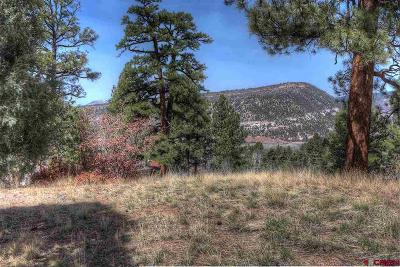 Durango Residential Lots & Land For Sale: 45 Eagles Nest Court