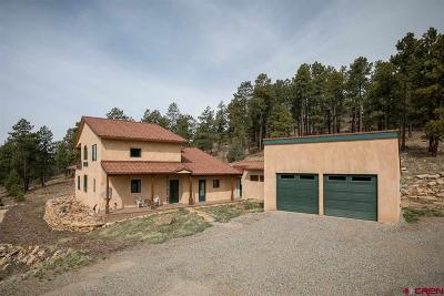 La Plata County Single Family Home For Sale: 1715 Baby Bear Road