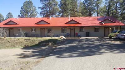 Pagosa Springs Multi Family Home For Sale: 33 Bienvenido