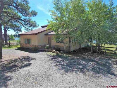 Pagosa Springs Single Family Home For Sale: 1836 Cr 600
