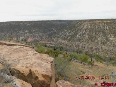 Cortez CO Residential Lots & Land For Sale: $304,000