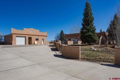 La Plata County Single Family Home For Sale: 606 Hwy 172