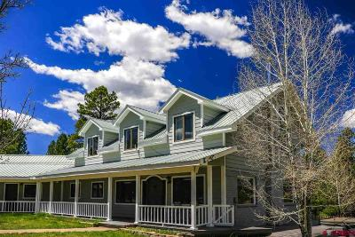 Pagosa Springs Single Family Home UC/Contingent/Call LB: 303 County Rd 411