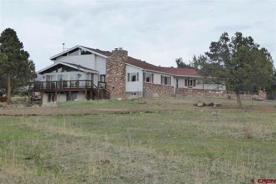 Delta County Single Family Home For Sale: 18487 Surface Creek Road