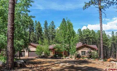 La Plata County Single Family Home For Sale: 8833 Cr 501