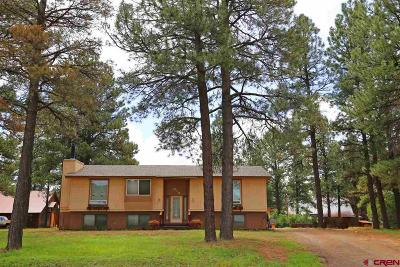Pagosa Springs Single Family Home UC/Contingent/Call LB: 614 Monument