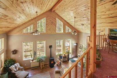 Bayfield Single Family Home For Sale: 133 Mountain Shadow Drive