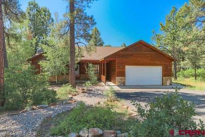 Pagosa Springs Single Family Home UC/Contingent/Call LB: 276 Capitan