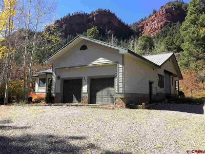 La Plata County Single Family Home For Sale: 21 Dyke Canyon Trail