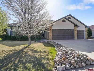 Montrose Single Family Home For Sale: 3835 Mount Hayden Drive