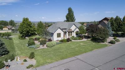 Montrose Single Family Home UC/Contingent/Call LB: 3147 Monte Vista Circle