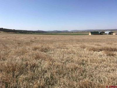 Durango Residential Lots & Land For Sale: 142 Cedar Circle