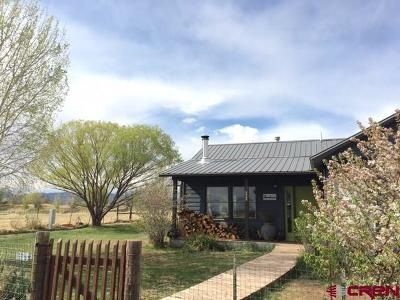 La Plata County Single Family Home For Sale: 106 N Countrymens Way