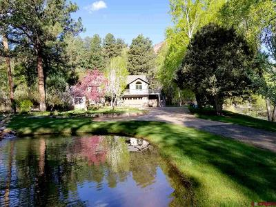 La Plata County Single Family Home For Sale: 8243 Cr 203