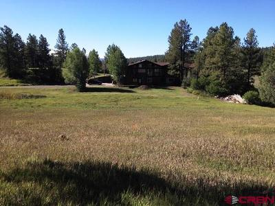 Pagosa Springs Single Family Home UC/Contingent/Call LB: 2351 County Rd 411