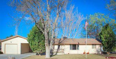 Delta CO Single Family Home For Sale: $214,900