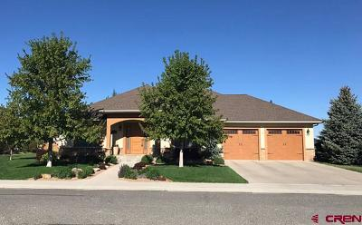 Montrose Single Family Home UC/Contingent/Call LB: 3932 Grand Mesa Drive