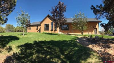 Bayfield Single Family Home For Sale: 8311 County Road 510