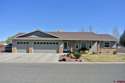 Montrose Single Family Home For Sale: 1685 Sneffels Street