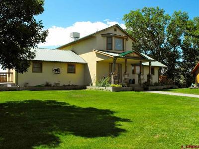 Olathe Single Family Home For Sale: 5595 Hwy 348