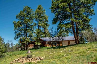 Pagosa Springs Single Family Home For Sale: 639 Top Ridge Place