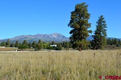 Durango Residential Lots & Land Back on Market: 4661 Cr 141