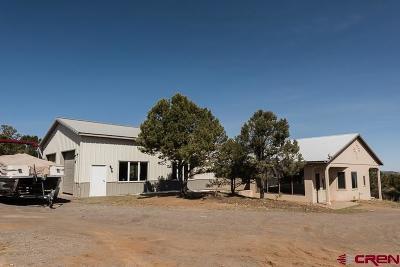 Ridgway Single Family Home For Sale: 1604 Ponderosa Drive